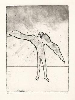 Vogelman, ets, 1973